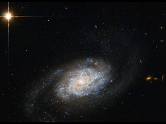 Спиральная галактика в скоплении Льва.